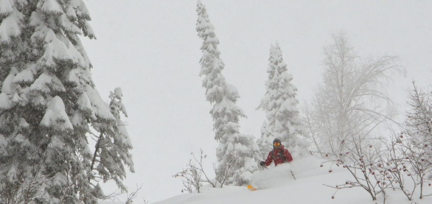 Siberian powder, full on!
