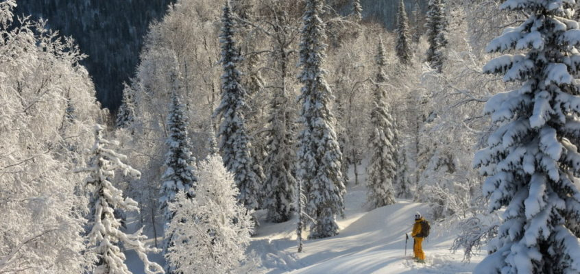 Siberia powderskiing – best season ever.